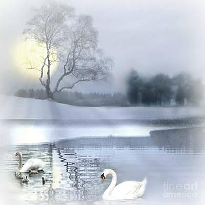 Swans Mixed Media - A Foggy Winter's Morniing by Morag Bates