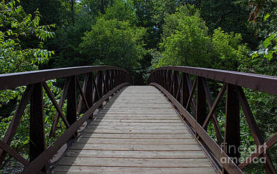Photograph - A Footbridge To The Woods by Barbara McMahon