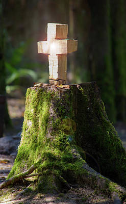 Photograph - A Forest Altar by Tikvah's Hope