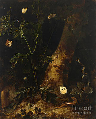 Salamanders Painting - A Forest Floor  Still Life With A Salamander by Celestial Images