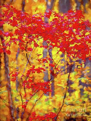 Digital Art - A Forest On Fire Ap by Dan Carmichael