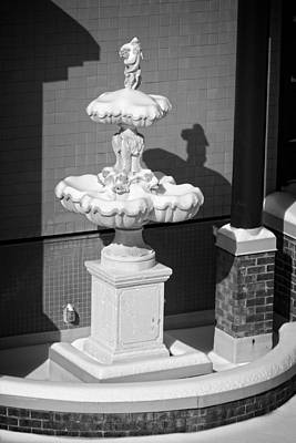 Photograph - A Fountain Of Snow by George Taylor