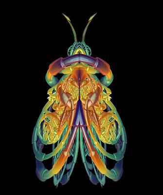 A Fractal Bug Art Print