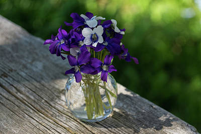 Photograph - A Fragrant Bouquet Of Spring - Can You Smell It by Georgia Mizuleva