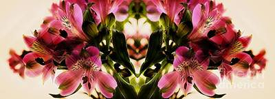 Photograph - A Freesia Reflection by Clare Bevan