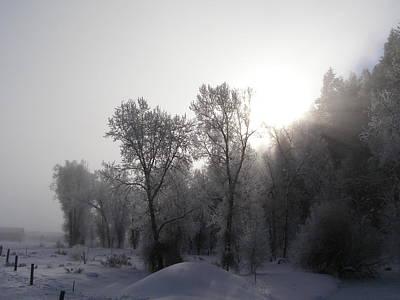 Photograph - A Frosty Morning by DeeLon Merritt