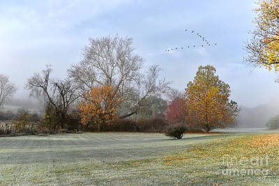 Photograph - A Frosty November Morning by Lois Bryan