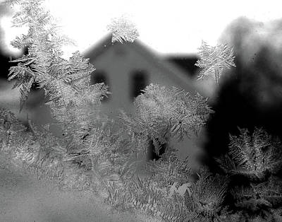 Photograph - A Frosty View by Nancy Griswold