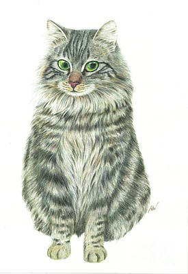 Painting - A Furry Cat  by Jingfen Hwu