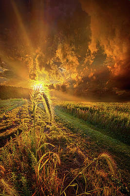 Photograph - A Future Awaits All Those Who Seeks Peace by Phil Koch