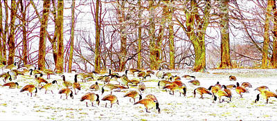 Digital Art - A Gaggle Of Geese by Leslie Montgomery