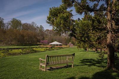 Photograph - A Garden Bench  by Terry DeLuco