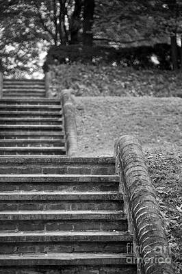 Photograph - A Garden Staircase  by Lara Morrison