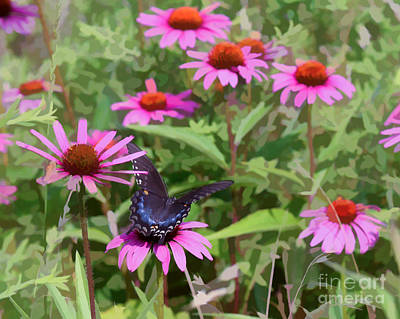 Photograph - A Garden Visitor by Kerri Farley