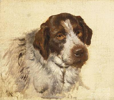 A German Wirehaired Pointer Art Print by MotionAge Designs
