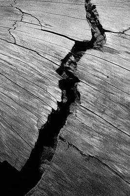 A Giants Death-bark Detail Art Print by Brigid Nelson