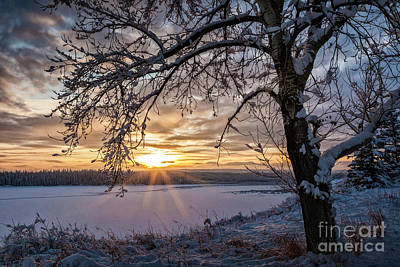 Photograph - A Glenmore Sunset by Brad Allen Fine Art