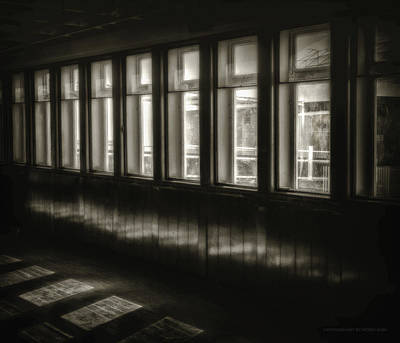 Photograph - A Glimps From The Dark by Denise Dube