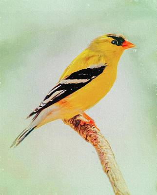 Digital Art - A Gold Finch Perching by Rusty R Smith