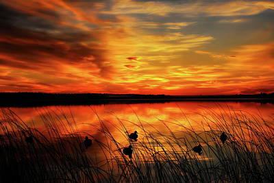 Photograph - A Golden Sunrise Duck Hunt by Dale Kauzlaric