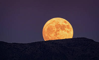 Photograph - A Golden Super Moon Rising  by Saija Lehtonen