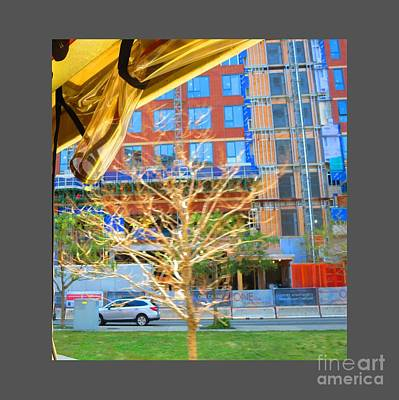 Photograph - A Golden Tree View From Duck Tour Bus Window by Navin Joshi