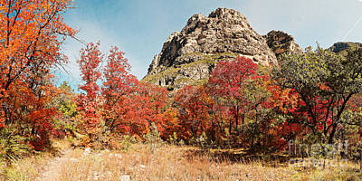 Photograph - A Gorgeous Day For A Hike Deep In Mckittrick Canyon - Guadalupe Mountains National Park - West Texas by Silvio Ligutti