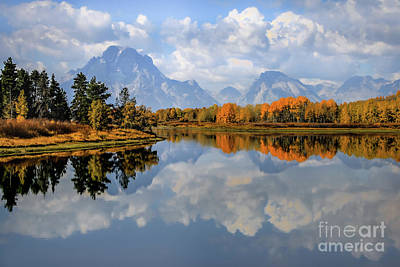 Photograph - A Grand View by Kim Clune