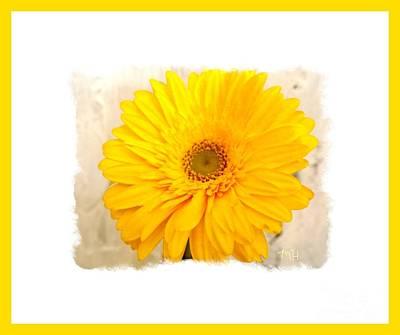 A Grand Yellow Gerber Art Print by Marsha Heiken