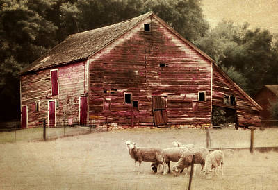 Barns Digital Art - A Grazy Day by Julie Hamilton