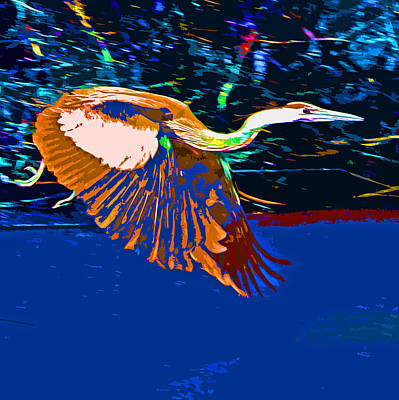 Photograph - A Great Abstract Heron by Joseph Coulombe
