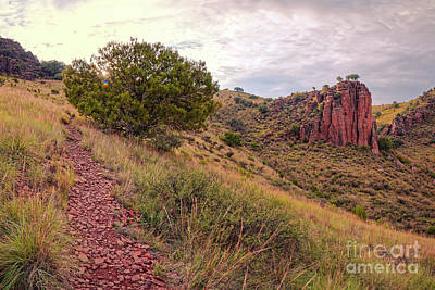 Photograph - A Great Day For A Hike - Indian Lodge Trail Davis Mountains State Park - Fort Davis West Texas by Silvio Ligutti