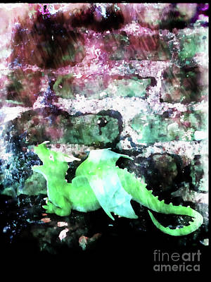 Photograph - A Green Dragon by Tom Gowanlock