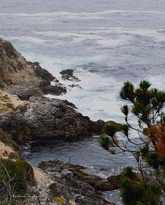 Waterscape Painting - A Grey Day At Big Sur by Barbara Snyder