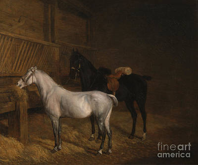 Horse Painting - A Grey Pony And A Black Charger by Celestial Images
