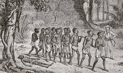 Slaves Drawing - A Group Of Captured Africans Being Led by Vintage Design Pics