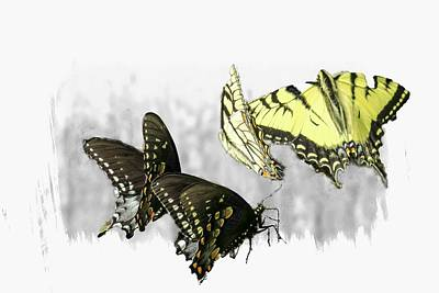 Digital Art - A Group Of Swallowtail Butterflies by Rusty R Smith