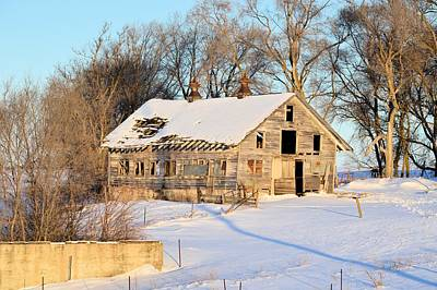 Photograph - A Hard Life Winter by Bonfire Photography