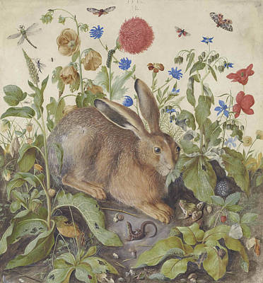Hare Wall Art - Painting - A Hare Among Plants by Hans Hoffman