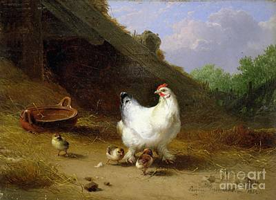 Farmyard Photograph - A Hen With Her Chicks by Eugene Joseph Verboeckhoven