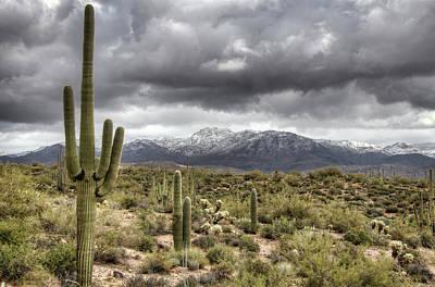 Photograph - A High Desert Snow Day  by Saija Lehtonen