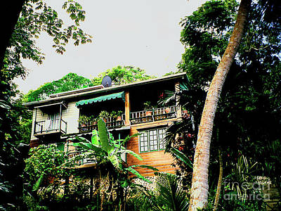 Photograph - A Home In The Cost Rica Rain Forest by Merton Allen