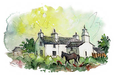 Painting - A Horse In Anglesey by Miki De Goodaboom