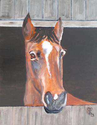 Painting - A Horse With No Name by Carole Robins