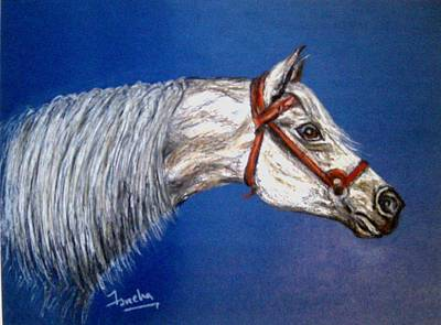 A Horse With No Name Art Print by Fareeha Khawaja