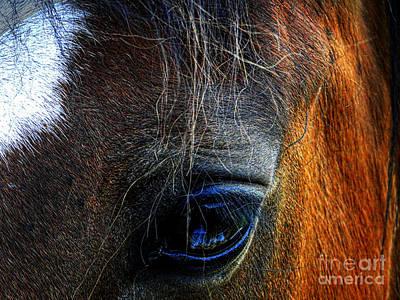 Photograph - A Horse's .... by Al Bourassa