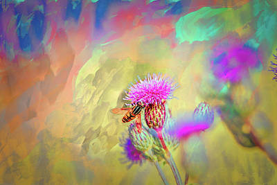 Photograph - A Hoverfly On Abstract #h3 by Leif Sohlman