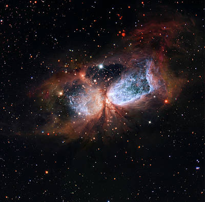 Art Print featuring the photograph A Composite Image Of The Swan by Nasa