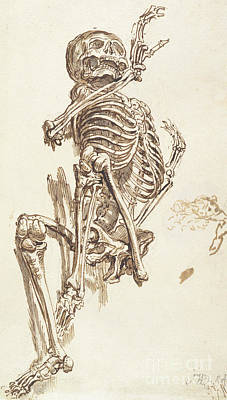 A Human Skeleton Print by James Ward