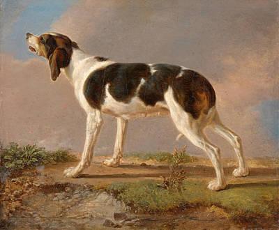 A Hunting Dog Art Print